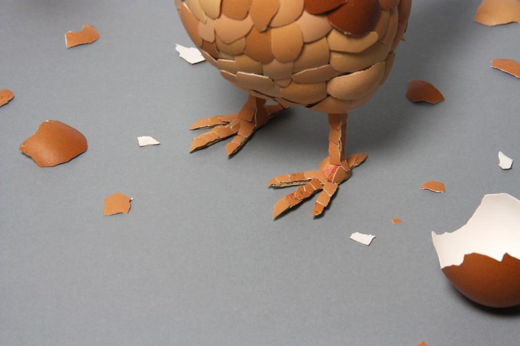eggshellchicken3